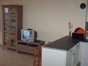 Salon coin TV + livres